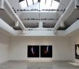 Opere del canadese Jack Goldstein. Pad centrale, Biennale di Venezia 2011. Ph. Silvia Dogliani