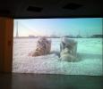 Pad. Israele. Biennale di Venezia 2011. Ph. Silvia Dogliani