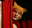Il gatto con gli stivali Ph. Angelo Redaelli