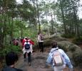 Al parco delle castagne