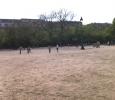 Cosa succede nei parchi di Parigi