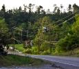 Downed power lines with debris, Alabama, May 2011. Ph. Amanda Dunn