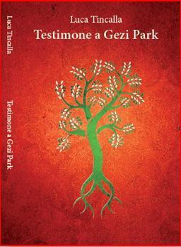 Luca Tincalla, Testimone a Gezi Park