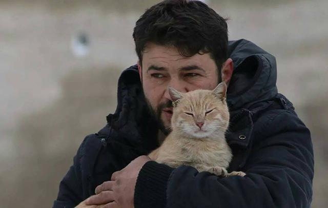 Il gattaro di Aleppo_640